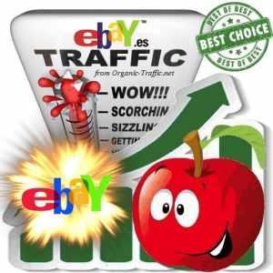 Buy Website Traffic eBay.es
