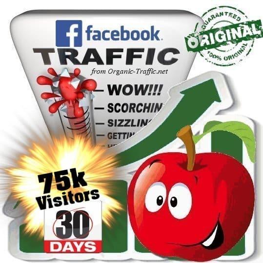 get 75000 facebook social traffic visitors in 30 days