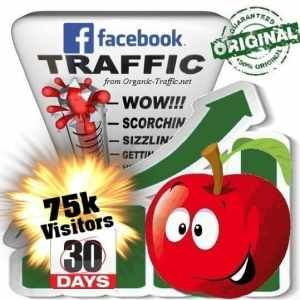 get 75000 facebook social traffic visitors in 30 days