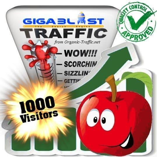 buy 1000 gigablast search traffic visitors
