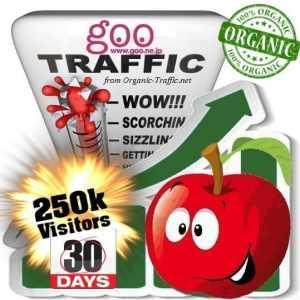 buy 250k goo organic traffic visitors for 30days