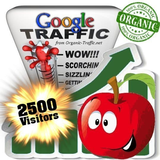2500 google organic traffic visitors