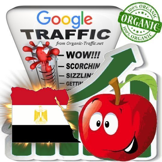 Egyptian Google Search Traffic