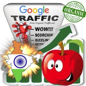 Indian Google Search Traffic