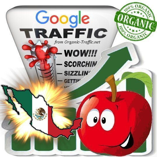 Mexican Google Search Traffic