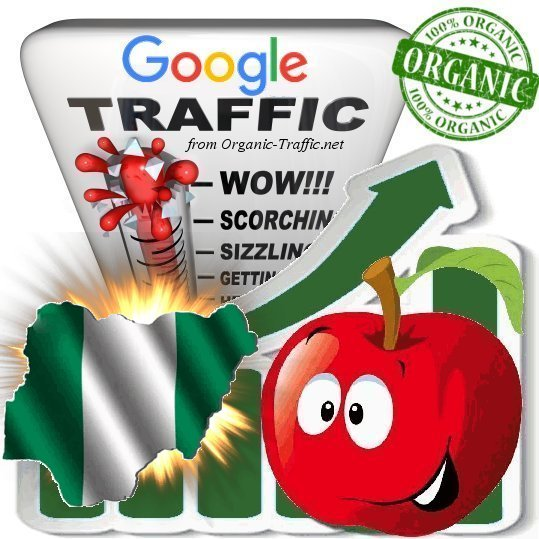 Nigerian Google Search Traffic