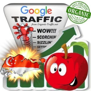 Singaporean Google Search Traffic