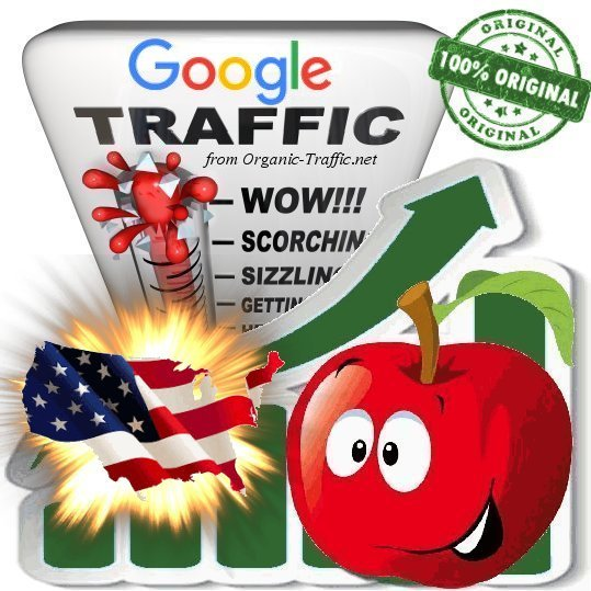 American Google Search Traffic