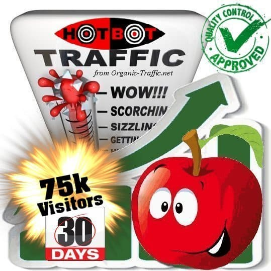 buy 75.000 hotbot search traffic visitors in 30days