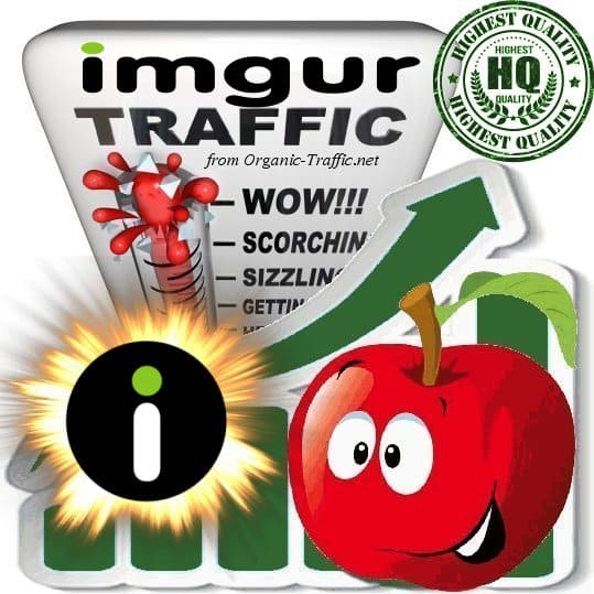 Buy Imgur.com Referral Web Traffic