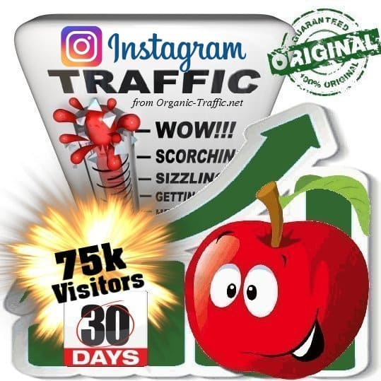 Buy 75k Instagram Visitors