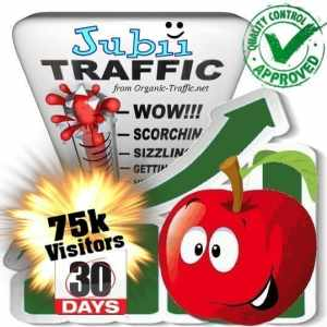 buy 75k jubii search traffic visitors within 30 days