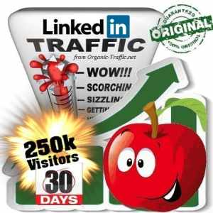 250k linkedin social traffic visitors 30 days