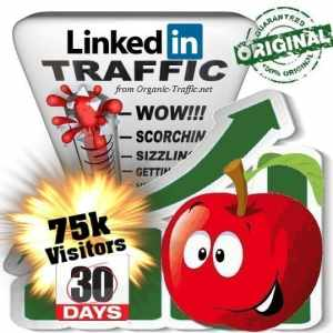 buy 75k linkedin social traffic visitors 30 days