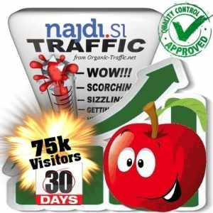 buy 75.000 najdi.si search traffic visitors within 30 days