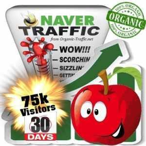 naver organic traffic visitors 30days 75k
