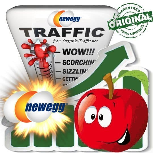Buy Newegg.com Web Traffic Service