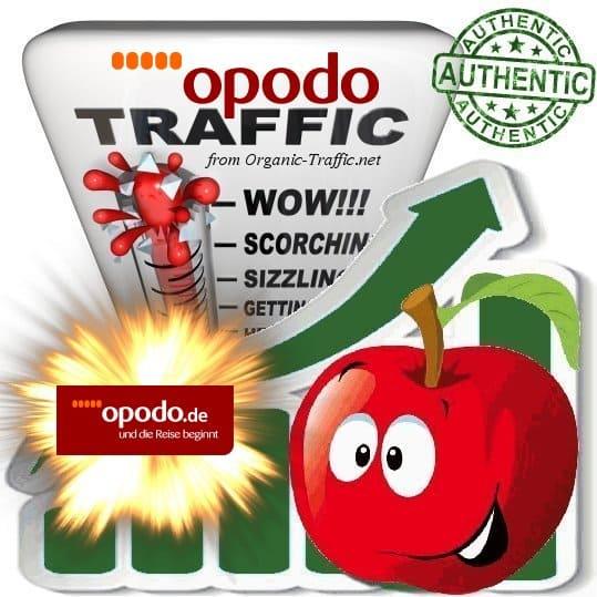 Buy Website Traffic Opodo.de