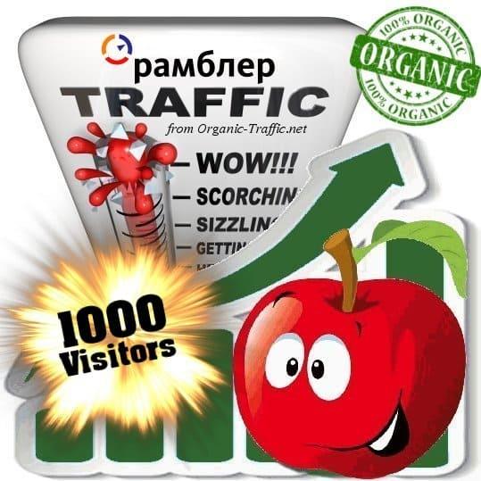 buy 1000 rambler organic traffic visitors