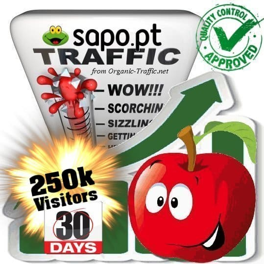 buy 250.000 sapo.pt search traffic visitors within 30 days