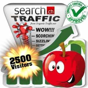 buy 2500 search.ch traffic visitors