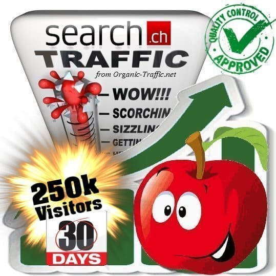 buy 250.000 search.ch traffic visitors 30 days