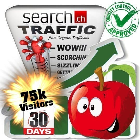 buy 75.000 search.ch traffic visitors 30 days