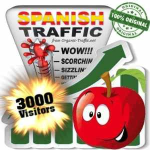 buy 3000 spanish traffic visitors
