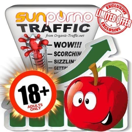 Buy Sunporno.com Adult Traffic