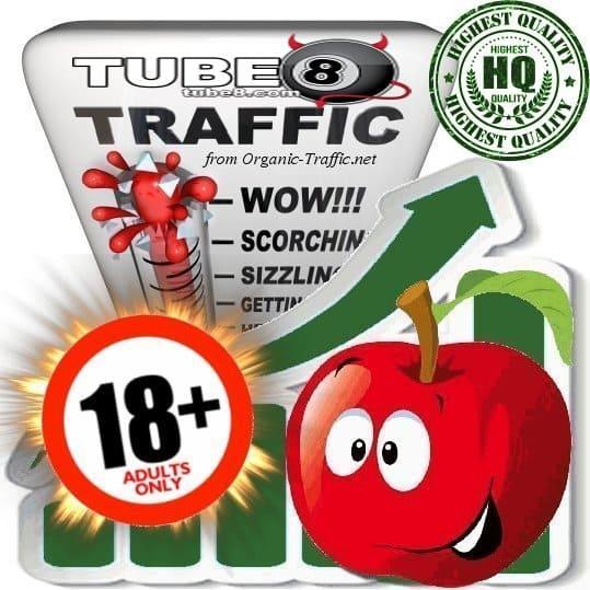 Buy Tube8.com Traffic Visitors at Adult Traffic Shop