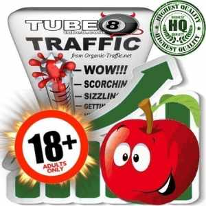Buy Tube8.com Adult Traffic