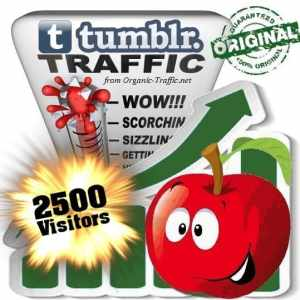 buy 2500 tumblr social traffic visitors