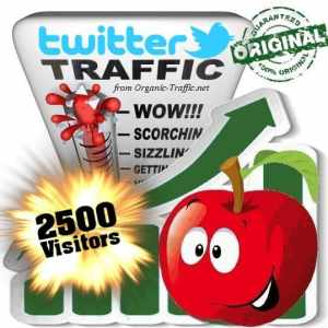 buy 2500 twitter social traffic visitors