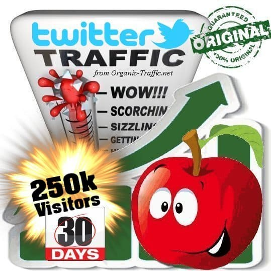 buy 250k twitter social traffic visitors within 30 days