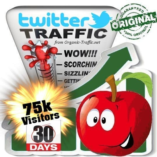 buy 75k twitter social traffic visitors within 30 days