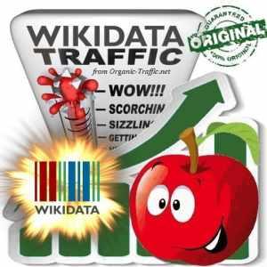 Buy Wikidata.org Web Traffic Service