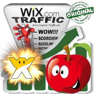 Buy Wix.com Web Traffic