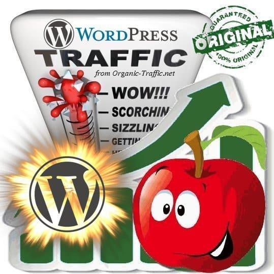 Buy WordPress.org Web Traffic