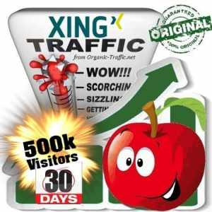 buy 500k xing social traffic visitors in 30 days