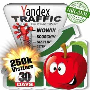 buy 250k yandex organic traffic visitors for 30days