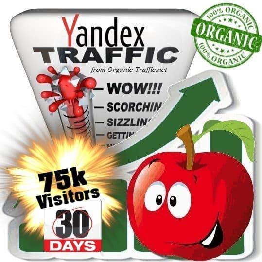 yandex organic traffic visitors 30days 75k