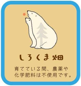 mihoshi1