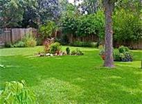 """Green & Organic in Your Lawn & Garden"""
