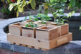 eco friendly planter trays