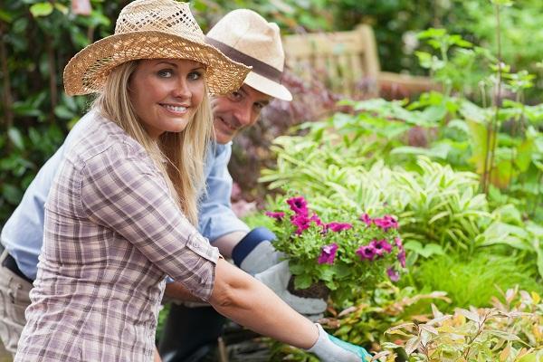Grow an Organic Garden in 6 Easy Steps-1 (2)