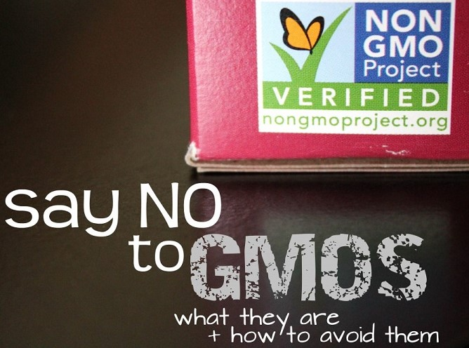 Say-No-to-GMOs-What-They-Are-and-How-to-Avoid-Them- (2)