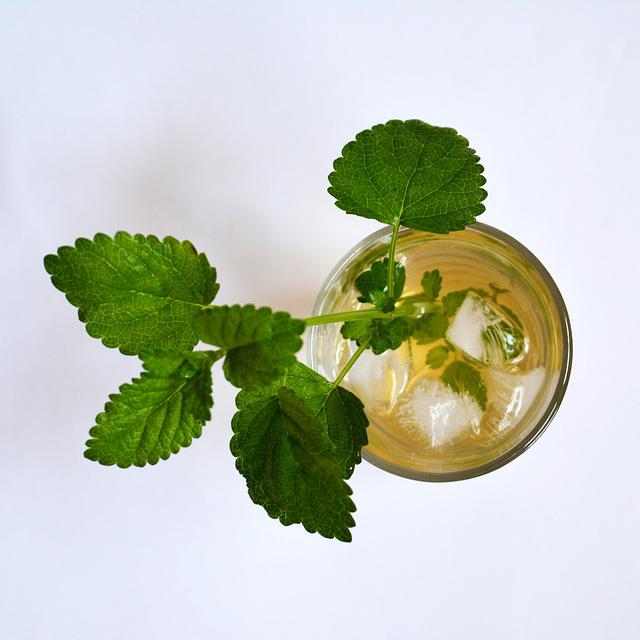 lemon balm herbal-ice-tea