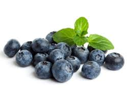 organic-blueberries