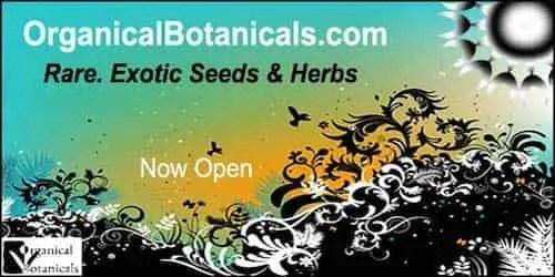organical botanicals Banner