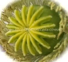 China White Papaver Somniferum Poppy Seeds